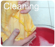 Sapo cleaning products